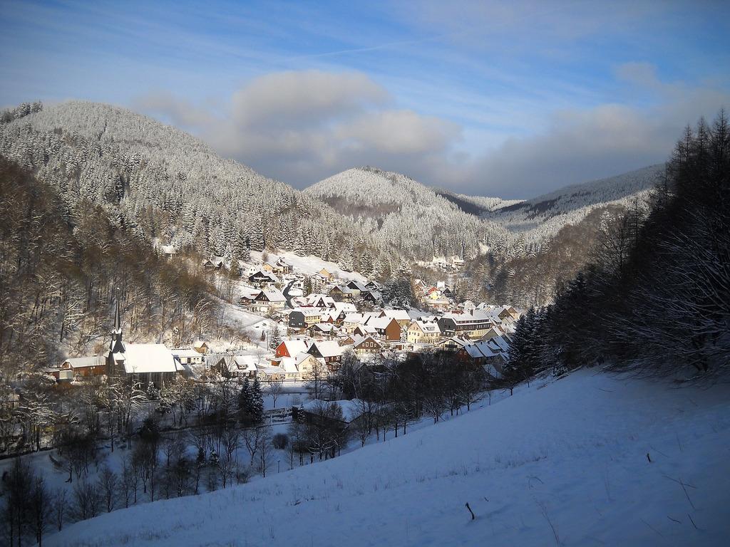 Sieber im Winter